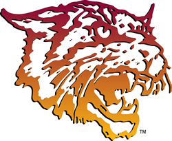 View All Bethune-Cookman University Wildcats Product Listings